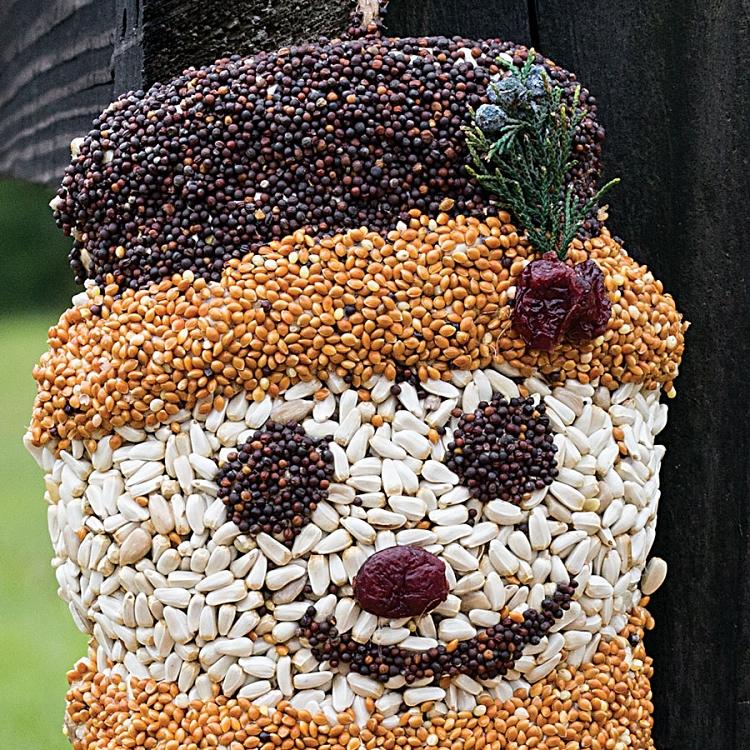 Mr Bird Seed Frosty Snowman