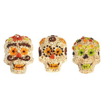Seed Skulls