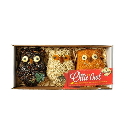 Ollie the Owl – 3 Pack