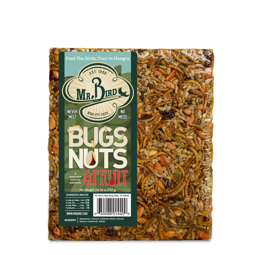 Bugs, Nuts, & Fruit Cake – Large